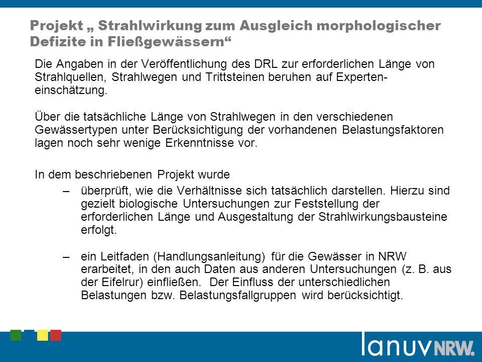 """Projekt """" Strahlwirkung zum Ausgleich morphologischer Defizite in Fließgewässern"""