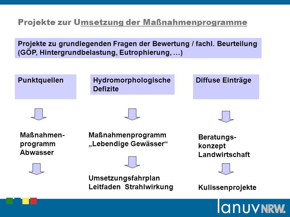 Projekte zur Umsetzung der Maßnahmenprogramme
