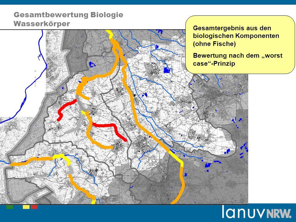 Gesamtbewertung Biologie Wasserkörper