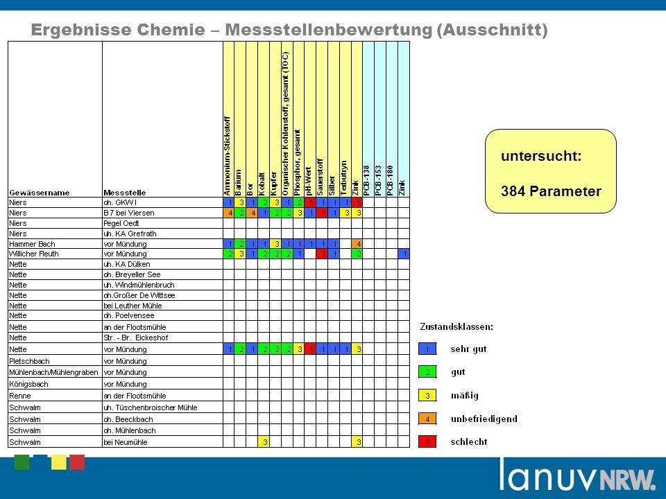 Ergebnisse Chemie – Messstellenbewertung (Ausschnitt)