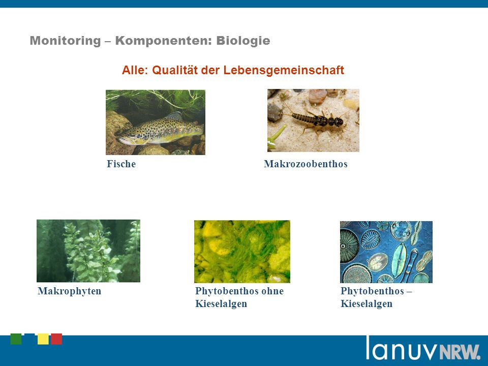 Monitoring – Komponenten: Biologie