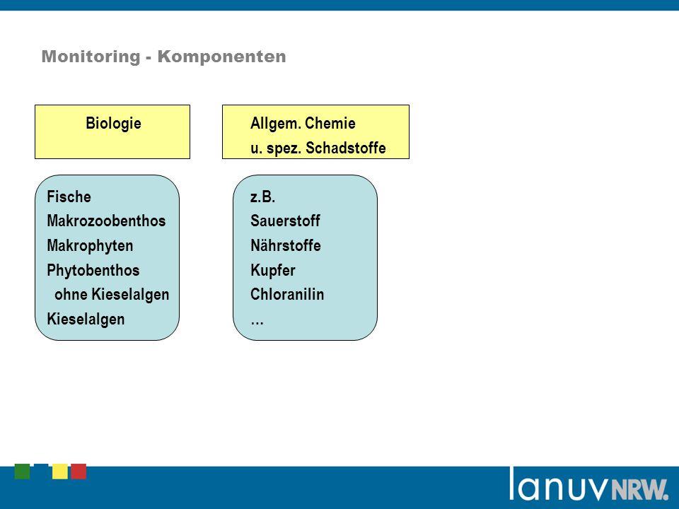 Monitoring - Komponenten