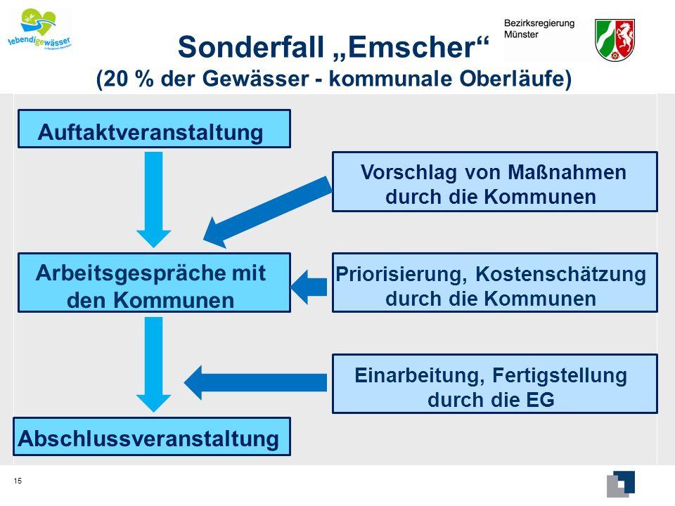 """Sonderfall """"Emscher (20 % der Gewässer - kommunale Oberläufe)"""