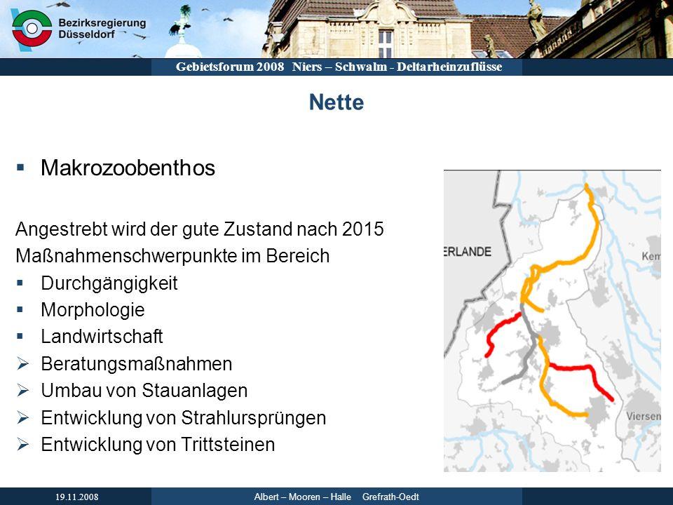 Nette Makrozoobenthos Angestrebt wird der gute Zustand nach 2015
