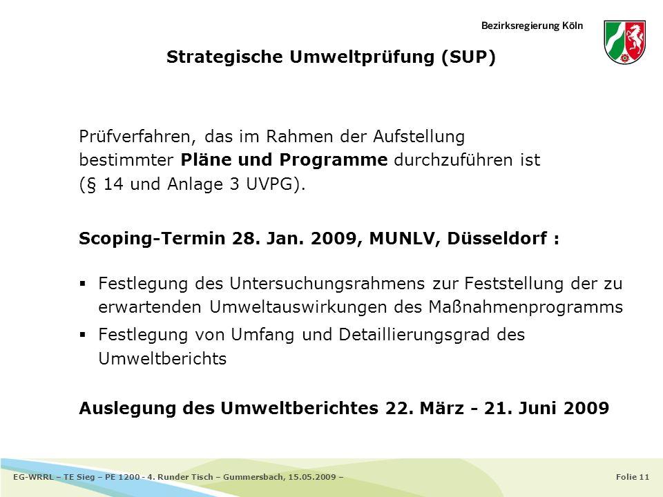 Strategische Umweltprüfung (SUP)
