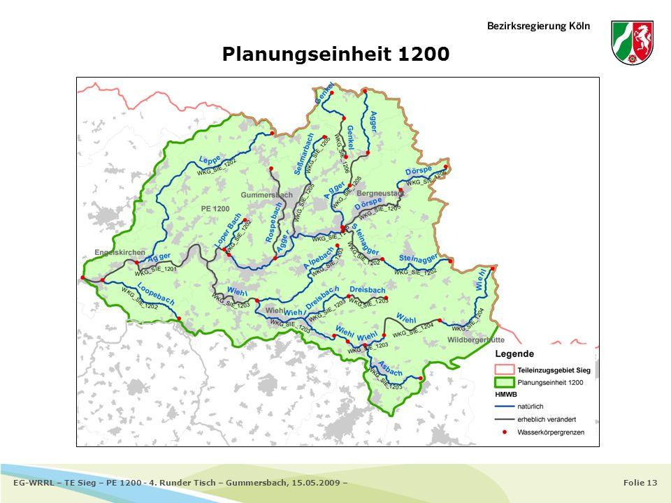 Planungseinheit 1200 EG-WRRL – TE Sieg – PE 1200 - 4. Runder Tisch – Gummersbach, 15.05.2009 –