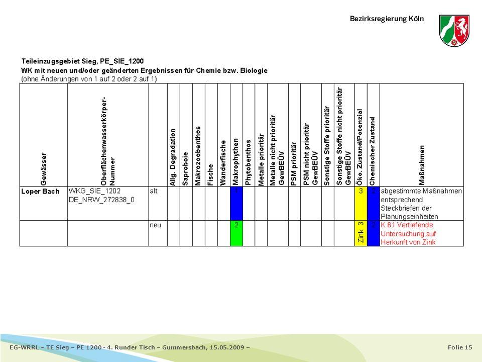EG-WRRL – TE Sieg – PE 1200 - 4. Runder Tisch – Gummersbach, 15. 05