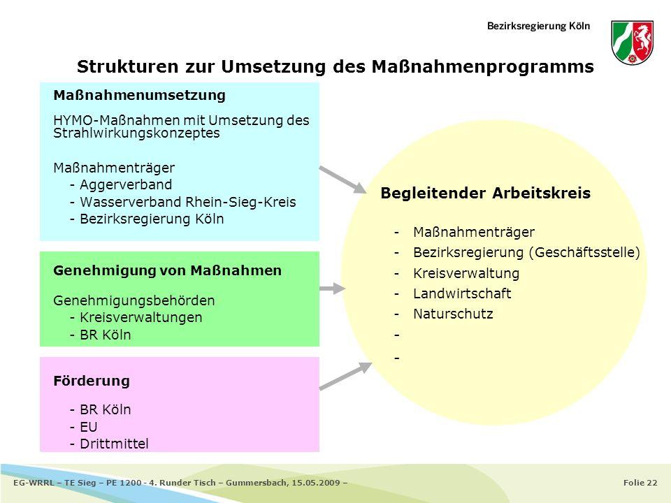 Strukturen zur Umsetzung des Maßnahmenprogramms