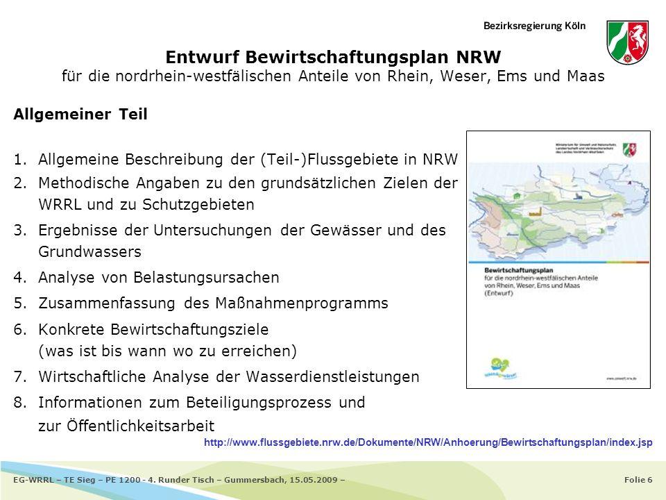 Entwurf Bewirtschaftungsplan NRW für die nordrhein-westfälischen Anteile von Rhein, Weser, Ems und Maas