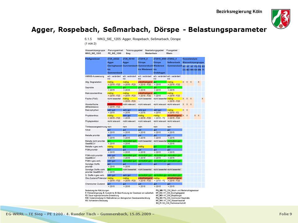Agger, Rospebach, Seßmarbach, Dörspe - Belastungsparameter