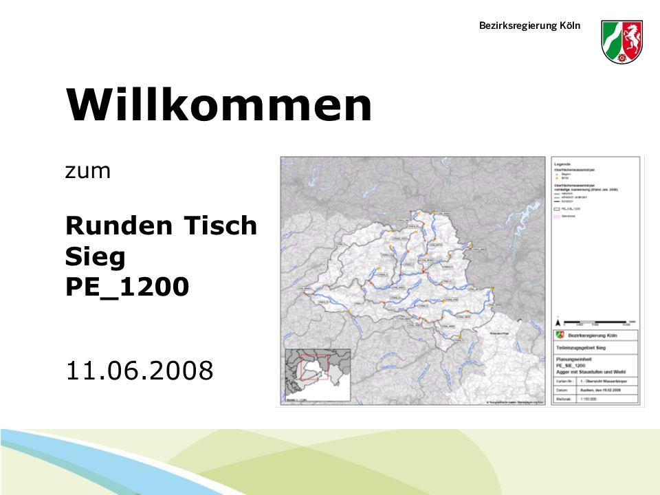 Willkommen zum Runden Tisch Sieg PE_1200 11.06.2008
