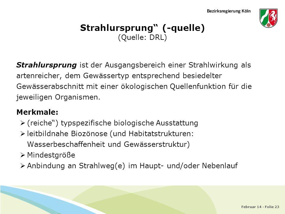Strahlursprung (-quelle) (Quelle: DRL)