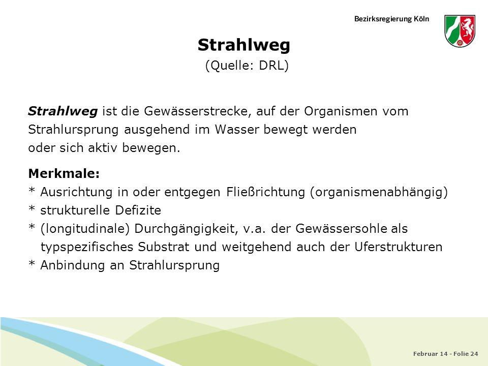 Strahlweg (Quelle: DRL)