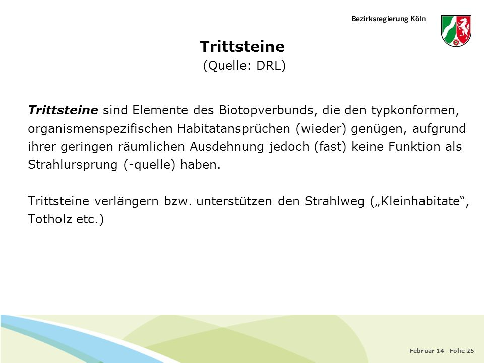 Trittsteine (Quelle: DRL)