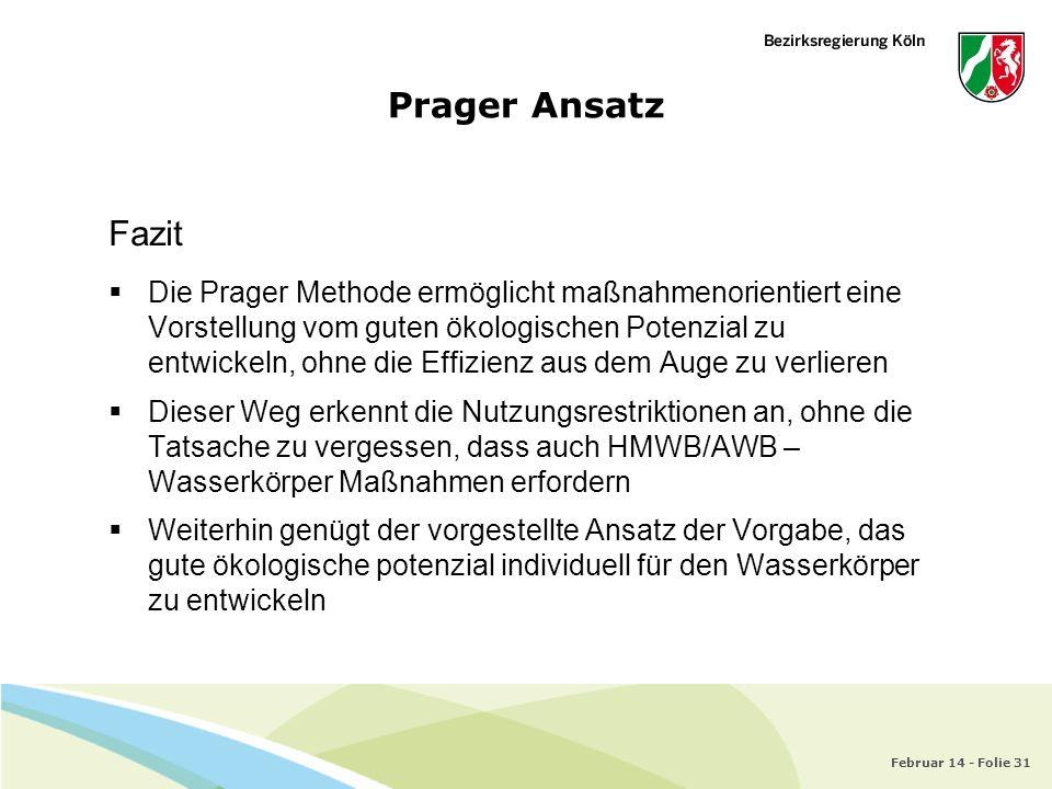 Prager Ansatz Fazit.