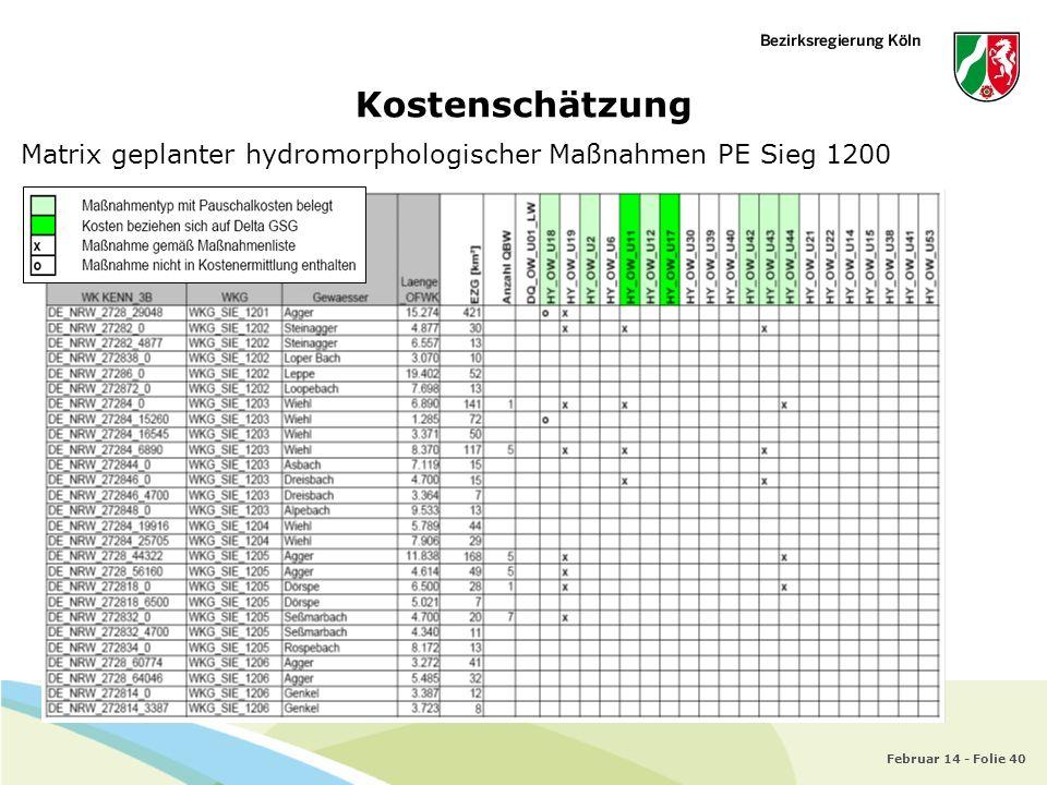 Kostenschätzung Matrix geplanter hydromorphologischer Maßnahmen PE Sieg 1200