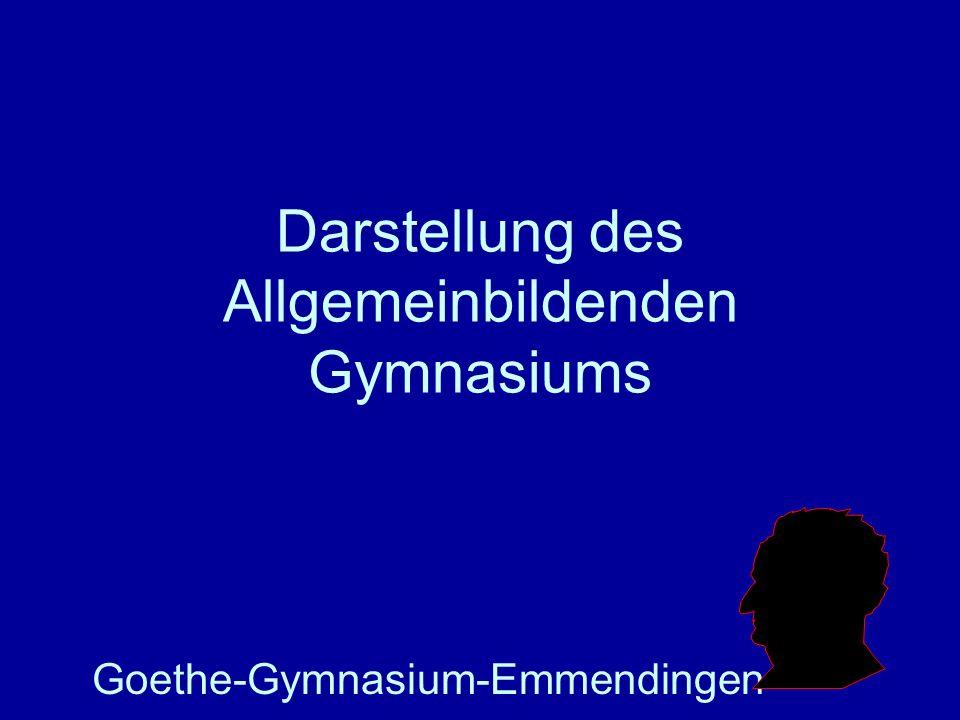 Darstellung des Allgemeinbildenden Gymnasiums