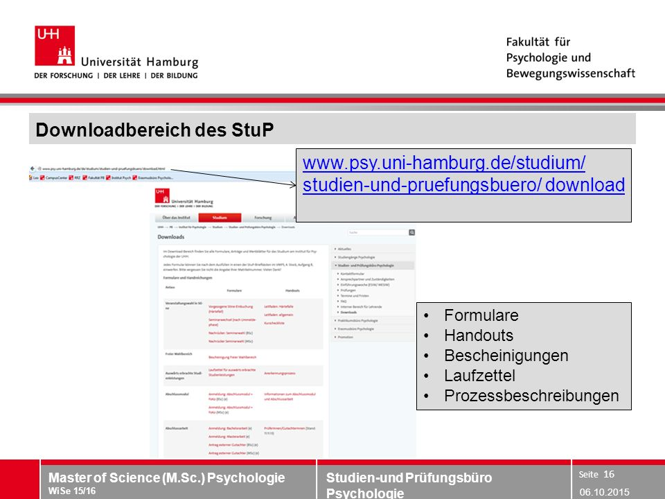 Downloadbereich des StuP