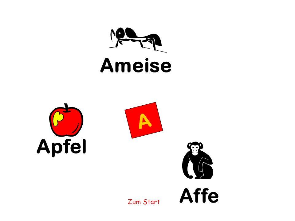 Ameise A Apfel Affe Zum Start