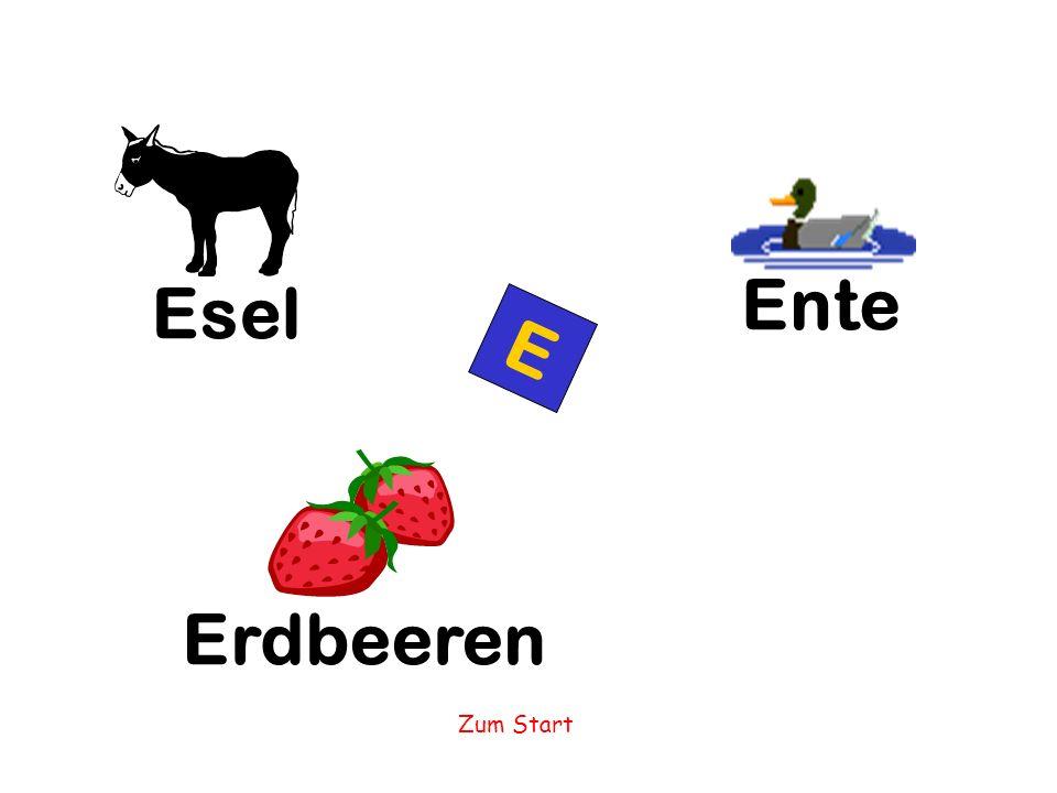 Ente Esel E Erdbeeren Zum Start