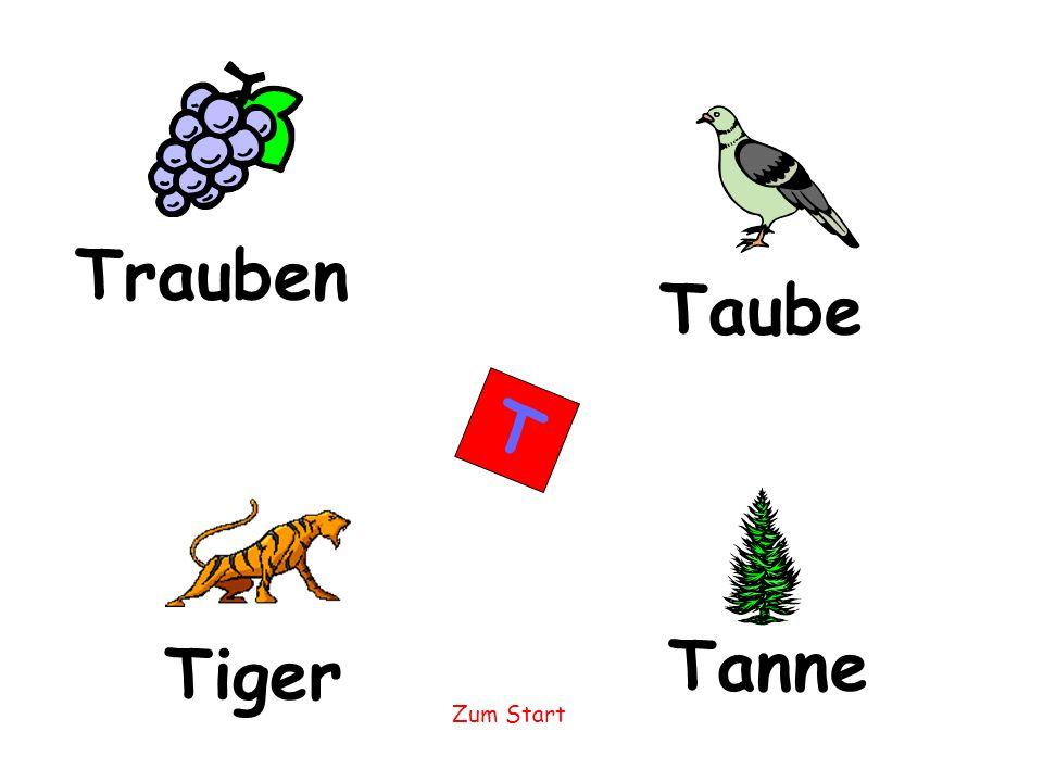 Trauben Taube T Tanne Tiger
