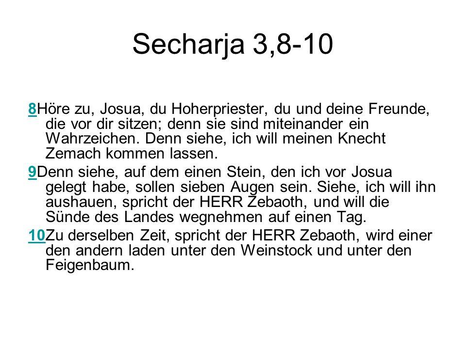 Secharja 3,8-10
