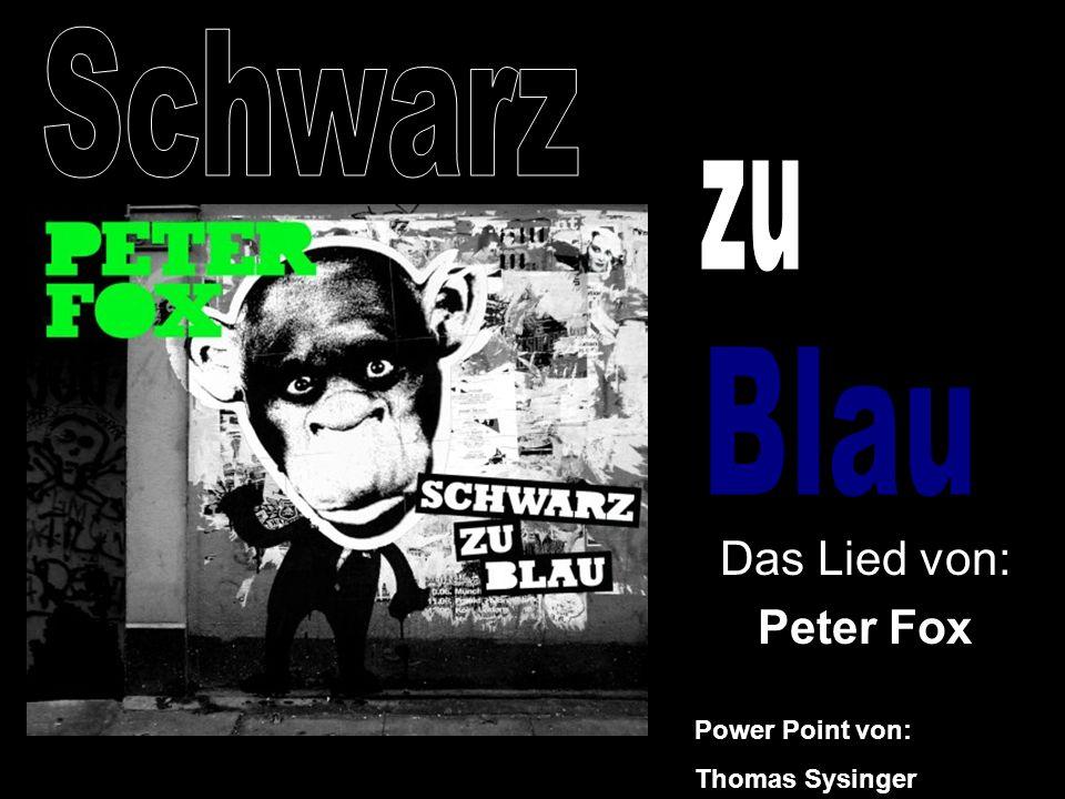 Schwarz Blau zu Das Lied von: Peter Fox Power Point von: