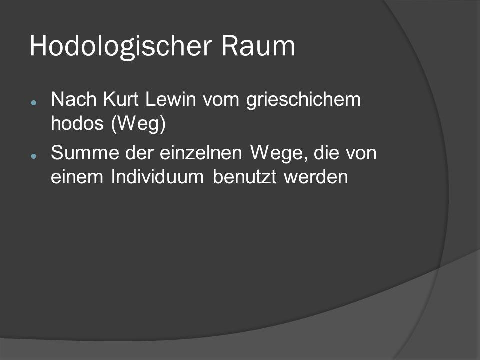 Hodologischer Raum Nach Kurt Lewin vom grieschichem hodos (Weg)