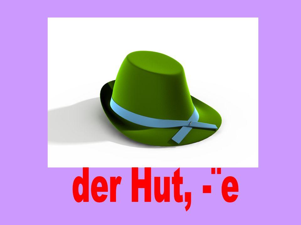 der Hut, -¨e