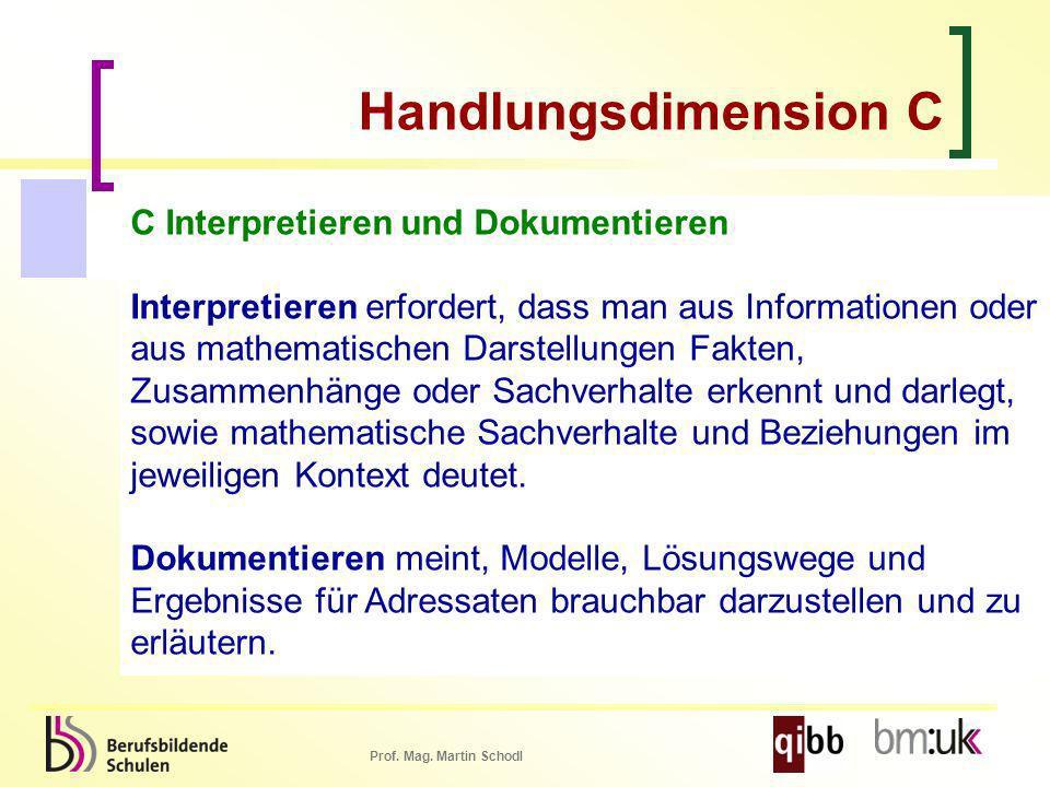 Handlungsdimension C C Interpretieren und Dokumentieren