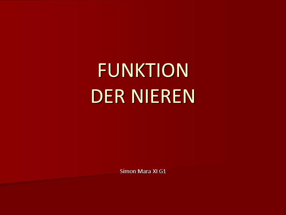 FUNKTION DER NIEREN Simon Mara XI G1