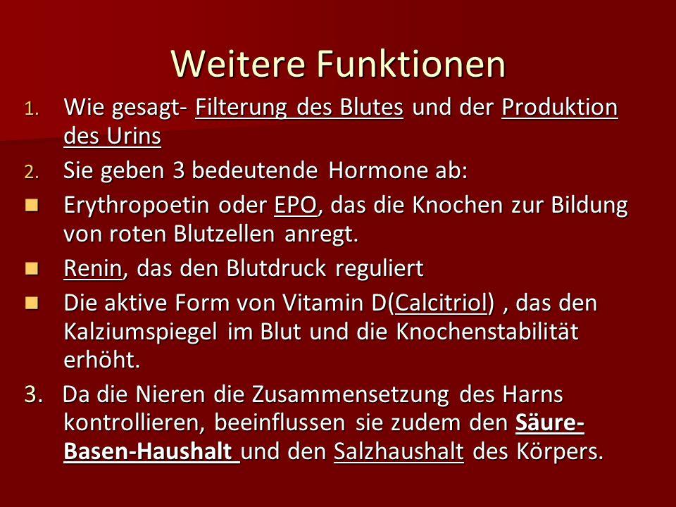 Weitere Funktionen Wie gesagt- Filterung des Blutes und der Produktion des Urins. Sie geben 3 bedeutende Hormone ab: