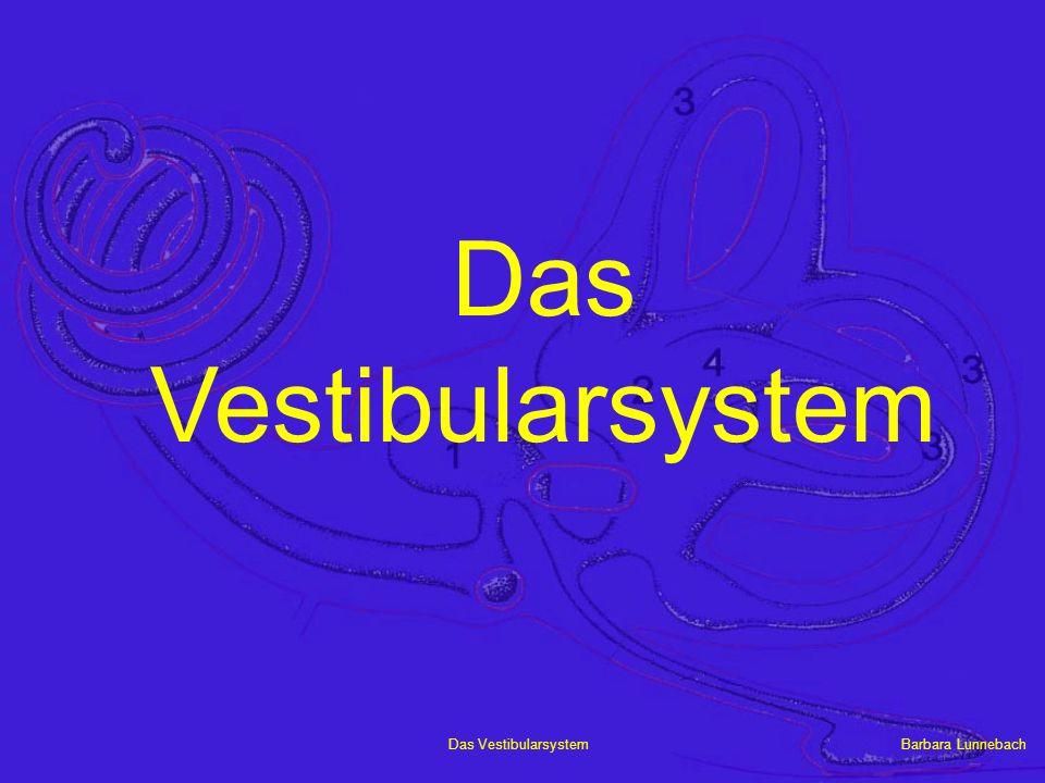 Das Vestibularsystem
