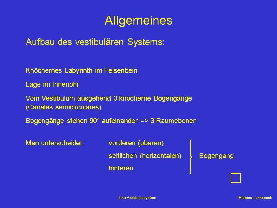 Allgemeines Aufbau des vestibulären Systems: