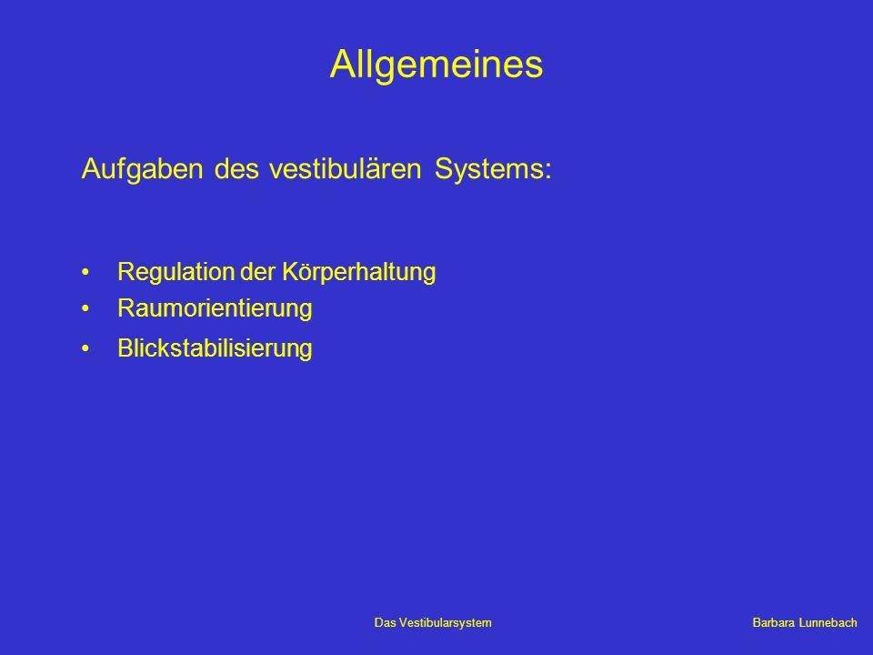 Allgemeines Aufgaben des vestibulären Systems: