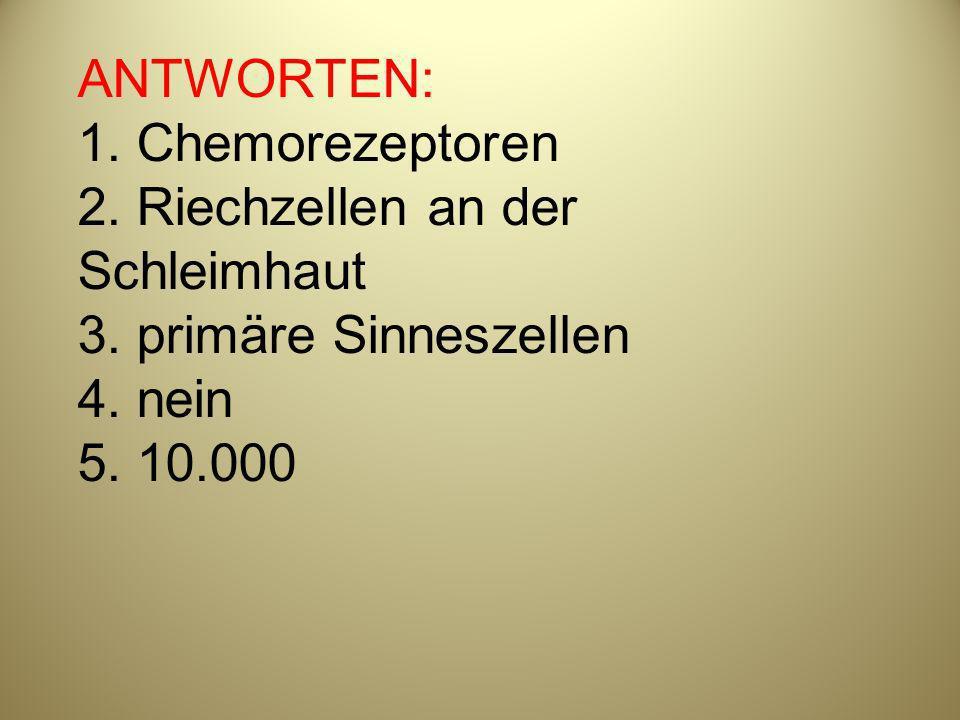 ANTWORTEN: 1. Chemorezeptoren 2. Riechzellen an der Schleimhaut 3