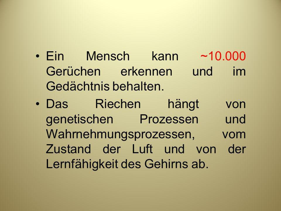 Ein Mensch kann ~10.000 Gerüchen erkennen und im Gedächtnis behalten.