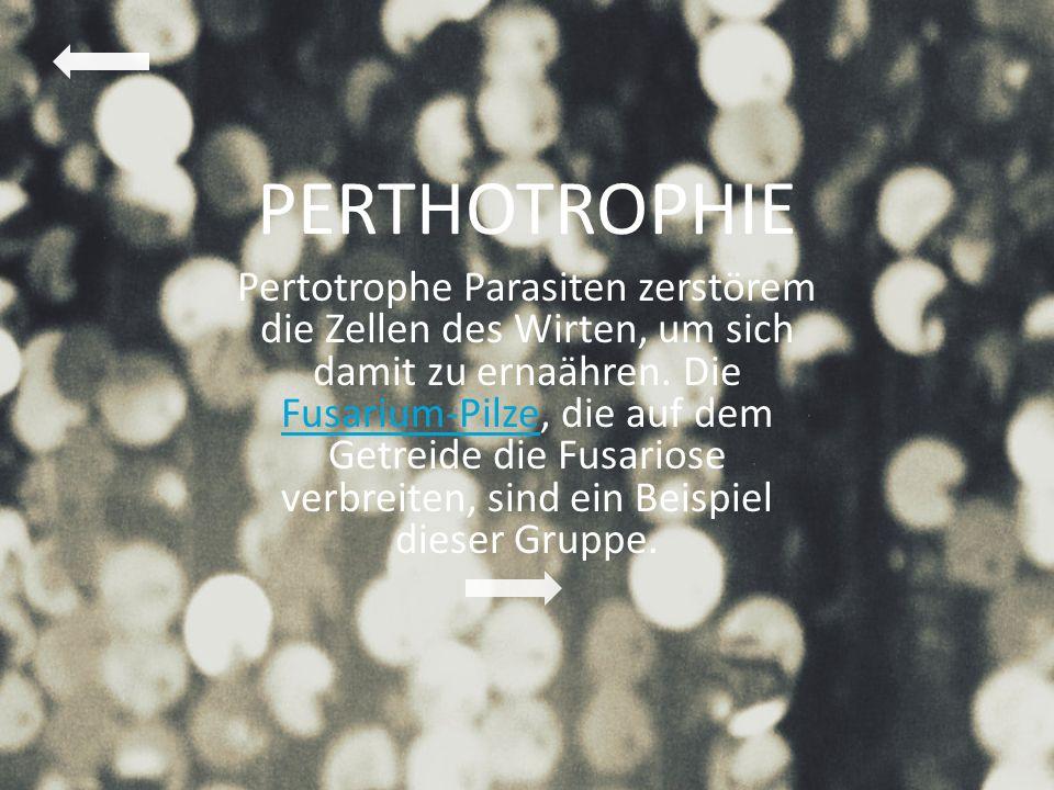 PERTHOTROPHIE