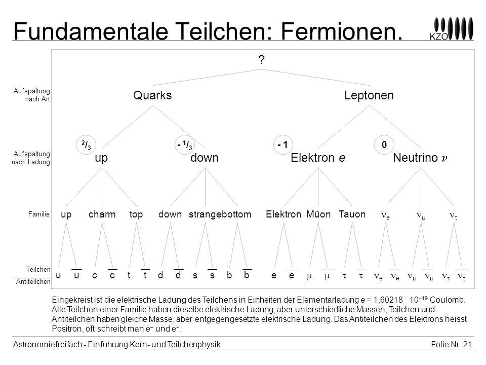 Fundamentale Teilchen: Fermionen.