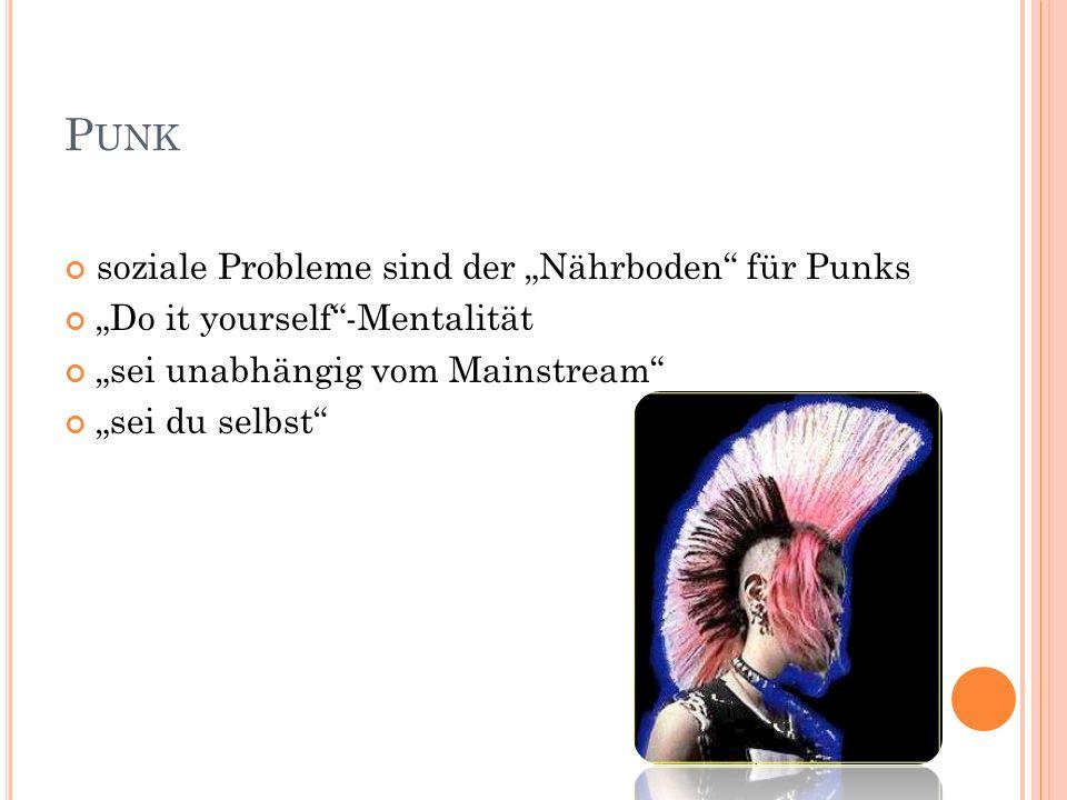 """Punk soziale Probleme sind der """"Nährboden für Punks"""