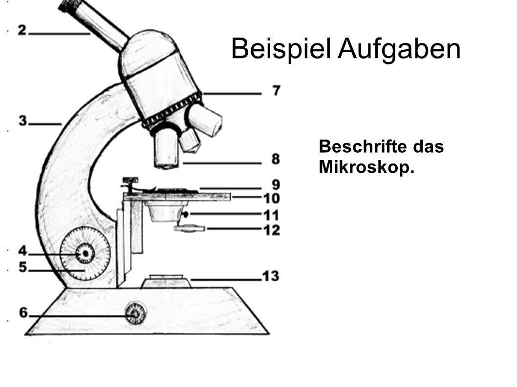Beispiel Aufgaben Beschrifte das Mikroskop. 5