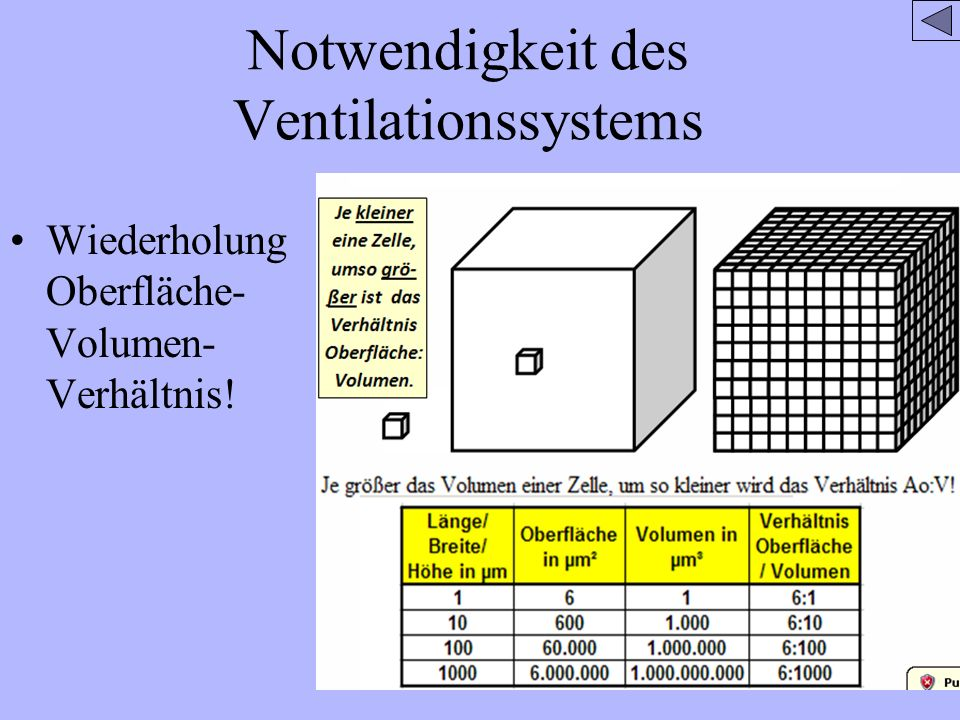 Notwendigkeit des Ventilationssystems