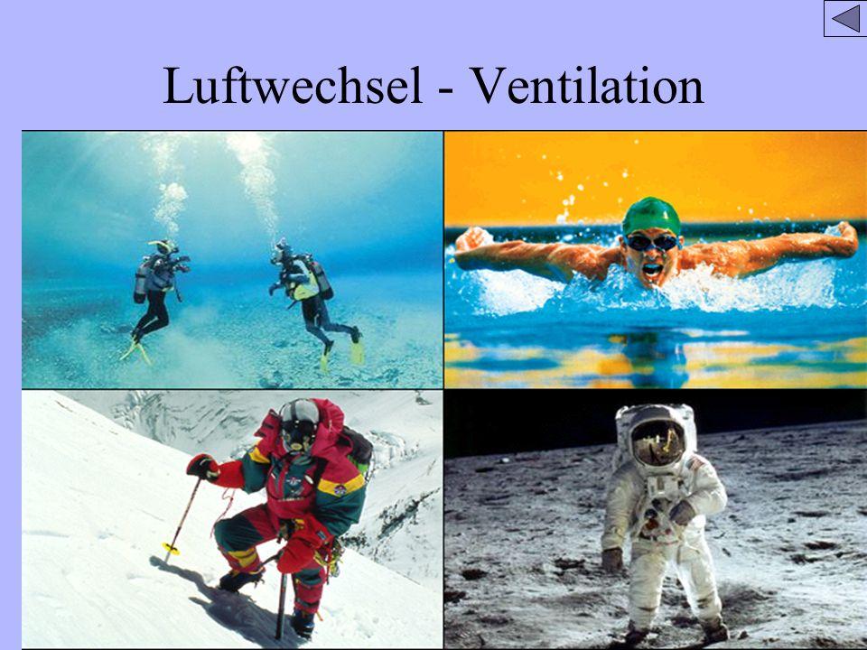 Luftwechsel - Ventilation