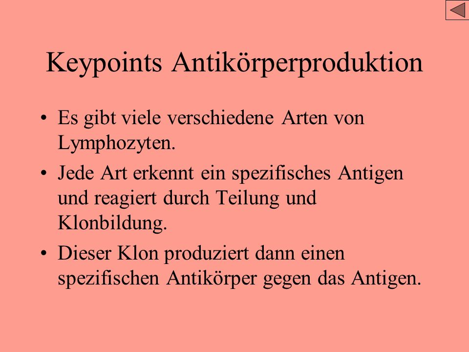 Keypoints Antikörperproduktion