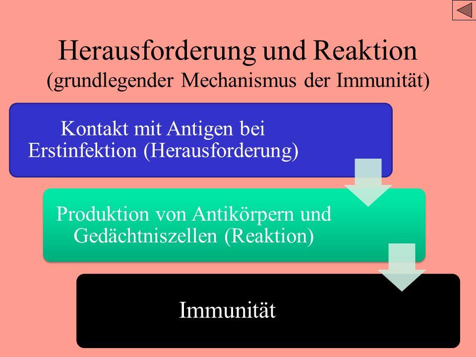 Herausforderung und Reaktion (grundlegender Mechanismus der Immunität)