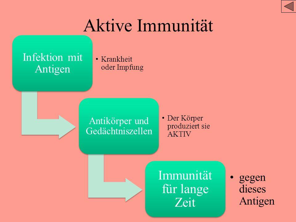 Aktive Immunität Immunität für lange Zeit Infektion mit Antigen