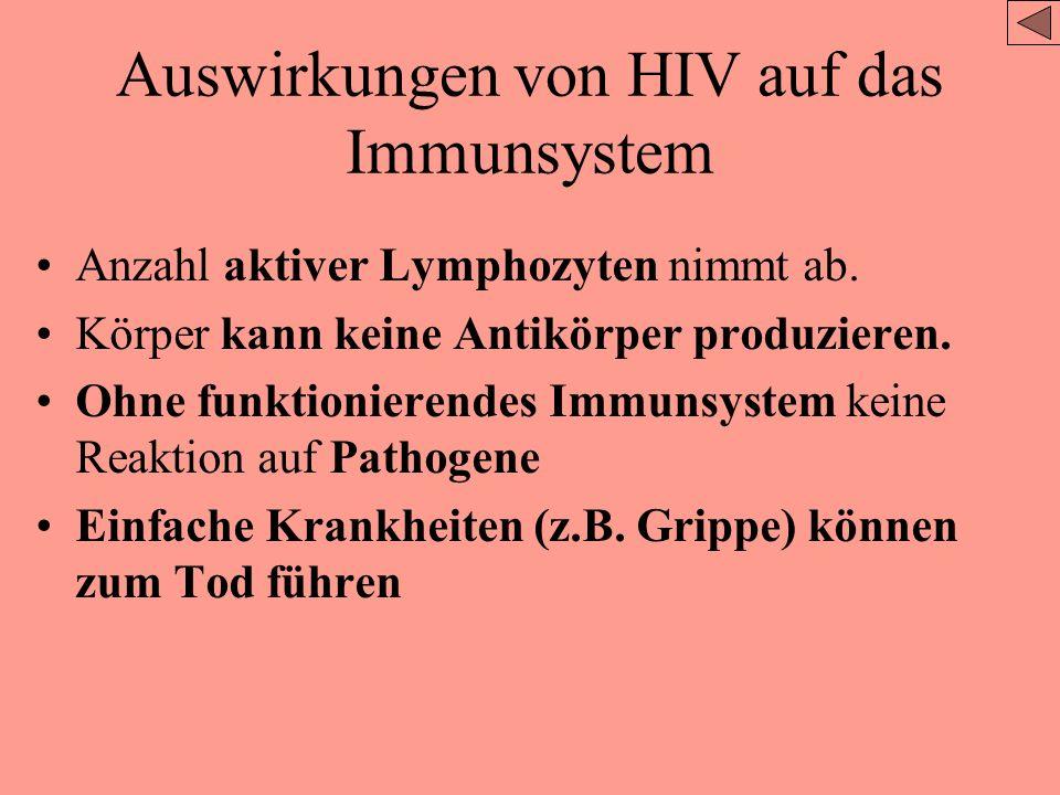 Auswirkungen von HIV auf das Immunsystem