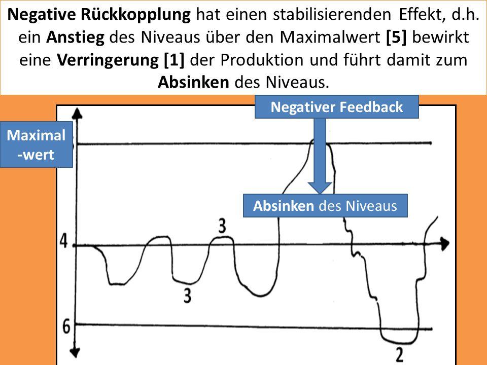 Negative Rückkopplung hat einen stabilisierenden Effekt, d. h