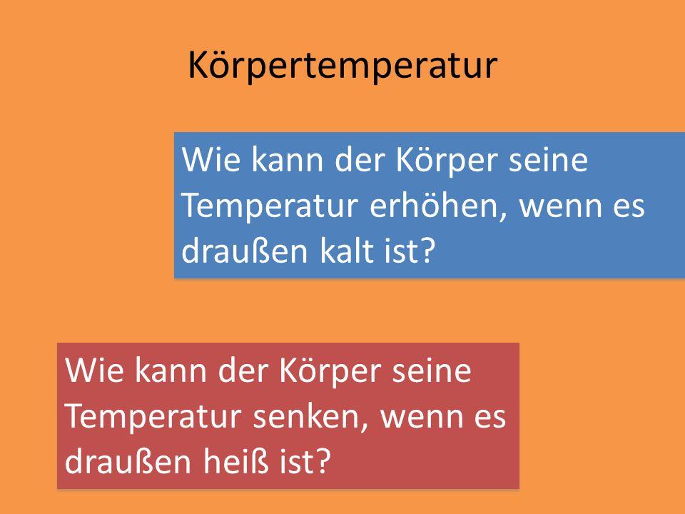 Körpertemperatur Wie kann der Körper seine Temperatur erhöhen, wenn es draußen kalt ist Wie kann der Körper seine.