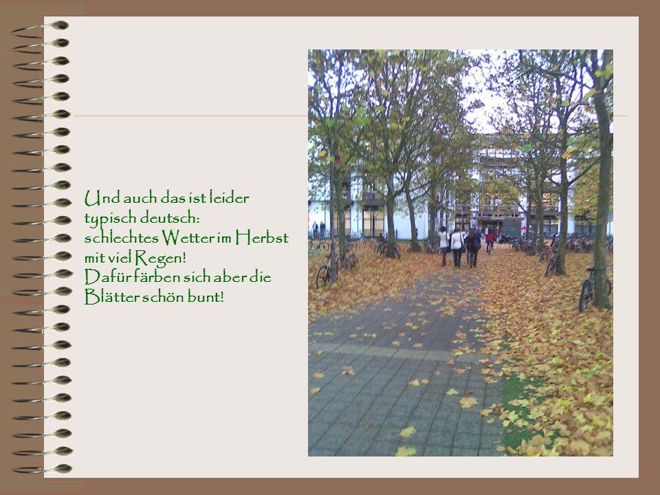 Und auch das ist leider typisch deutsch: schlechtes Wetter im Herbst mit viel Regen.